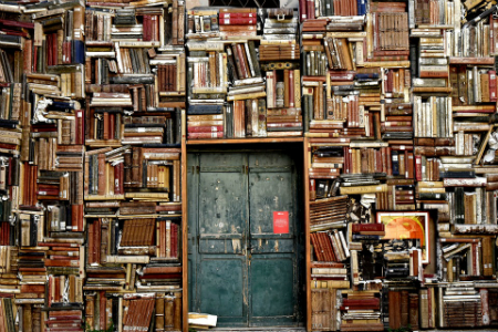 Image of a wall of books surrounding an old door