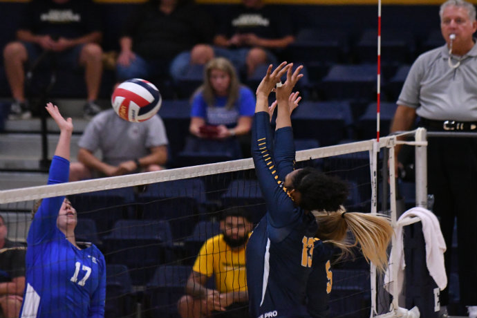 Photo of Texas Wesleyan women's volleyball team during game
